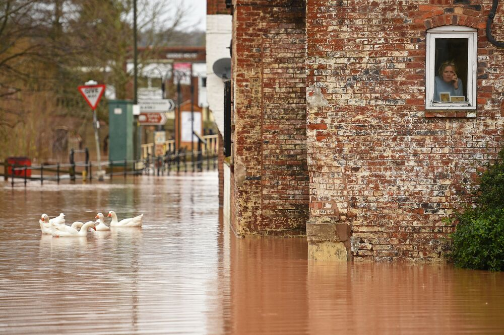 A woman looks out of her window as geese swim past in floodwater after the River Severn bursts it's banks in Bewdley, west of Birmingham on February 16, 2020, after Storm Dennis caused flooding across large swathes of Britain.