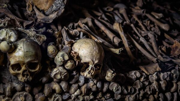 Human bones - Sputnik International