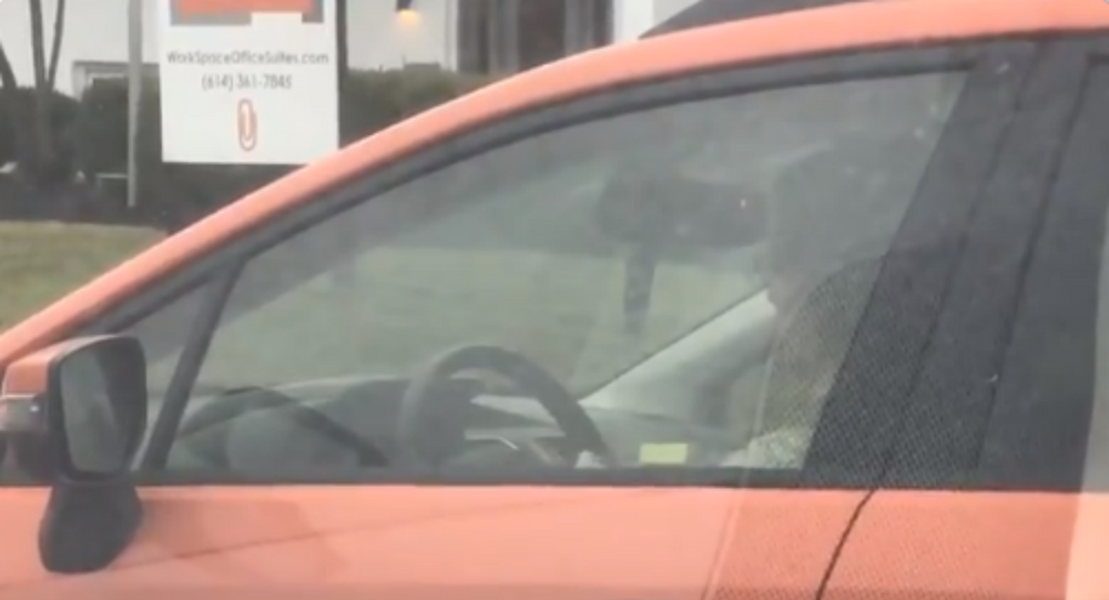 Needle and Red Light: Woman Caught Knitting While Driving