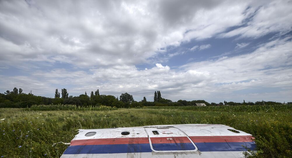 In this file photo taken on 20 July 2014 a piece of the wreckage of the Malaysia Airlines flight MH17 is pictured in a field near the village of Grabove, in the region of Donetsk.