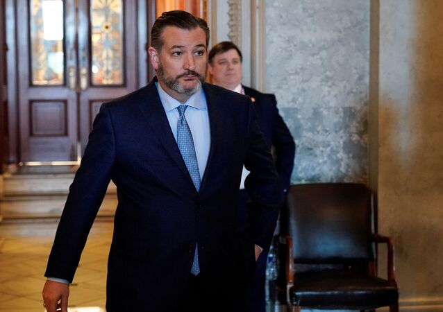 Senator Ted Cruz departs after the Republican policy luncheon on Capitol in Washington, U.S., February 4, 2020