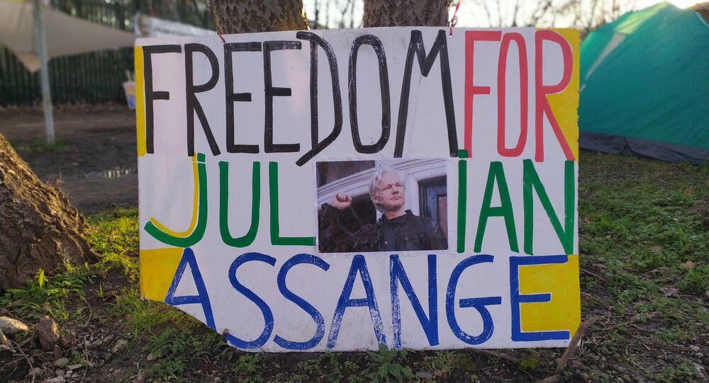 Freedom for Julian Assange Banner taken Jan_Feb 2020 by Mohamed Elmaazi