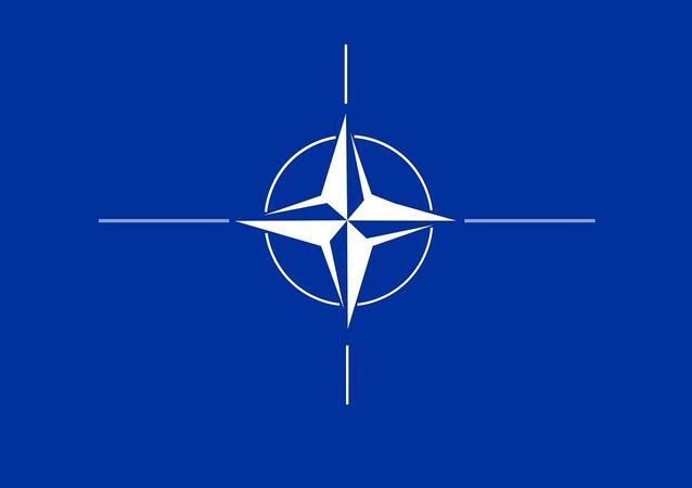 NATO insignia