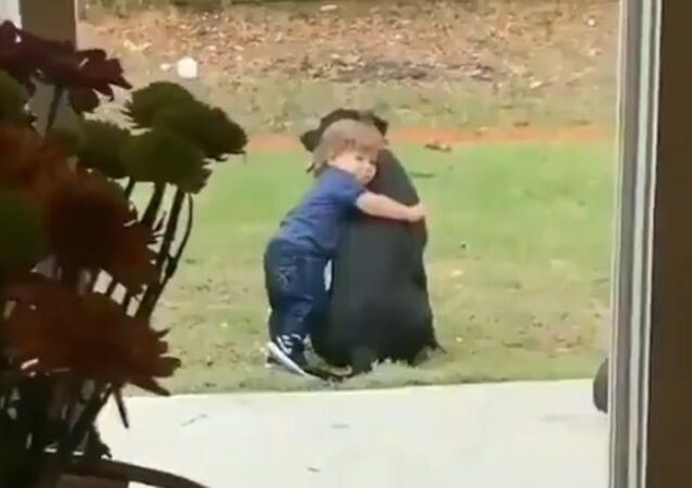 Comfort Pals: Toddler Hugs His Dog While Staying Home
