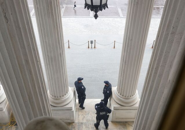 U.S. Capitol Police officers stand atop of the U.S. Senate stairway, ahead of a vote on the coronavirus relief bill, on Capitol Hill in Washington, U.S., March 25, 2020.