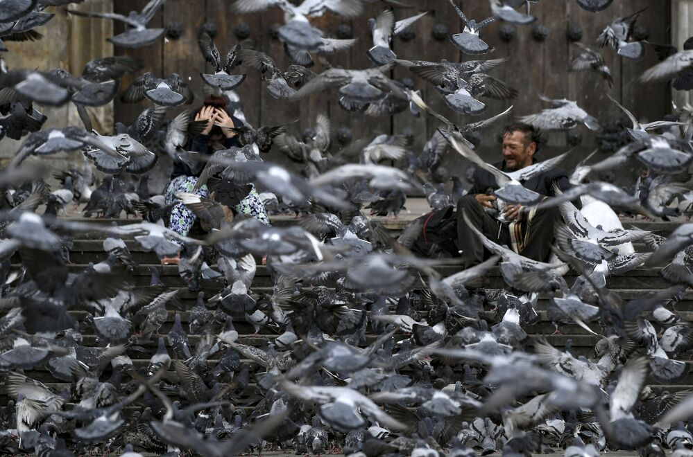 Pigeons, normally fed by tourists, search for food over people sitting at the almost empty Bolivar square, in Bogota, on March 25, 2020. - Colombia, the third most populous country in Latin America, began a compulsory 19-day general lockdown early Wednesday to try to control the COVID-19 pandemic, which left four dead with 470 cases reported since March 6 in the country.