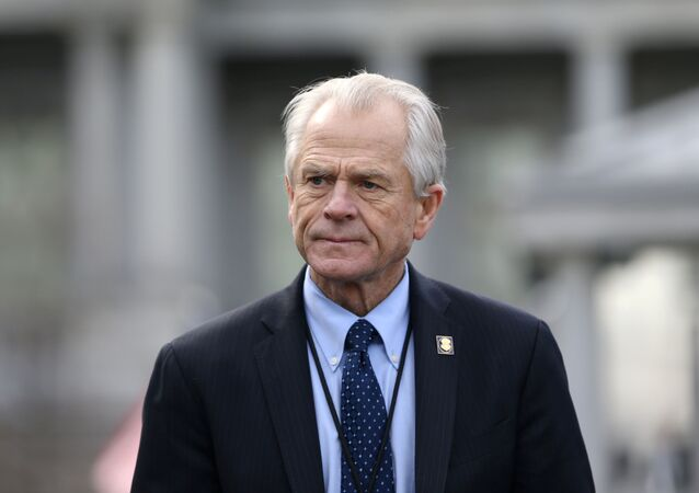 White House trade adviser Peter Navarro listens to a news conference about a presidential executive order relating to military veterans outside of the West Wing of the White House in Washington, U.S. March 4, 2019