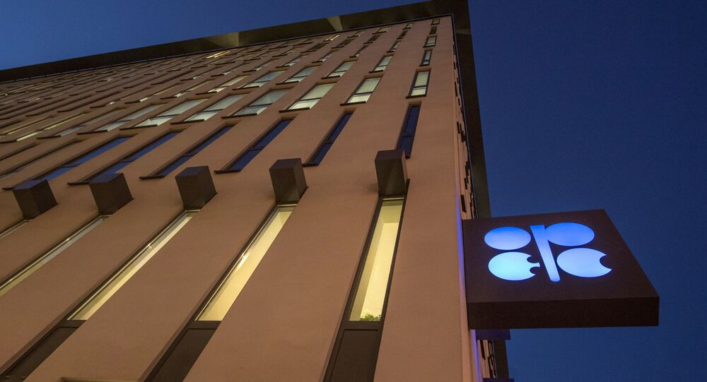 The logo of OPEC is pictured at the OPEC headquarters on the eve of the 171th meeting of the Organization of the Petroleum Exporting Countries in Vienna, on November 29, 2016