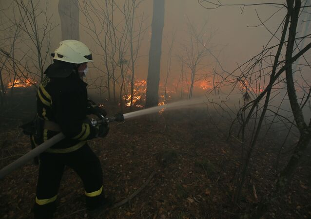 A firefighter extinguishes a fire on the territory of forestry located in the exclusion zone of the now-defunct Chernobyl nuclear power plant, in Ukraine