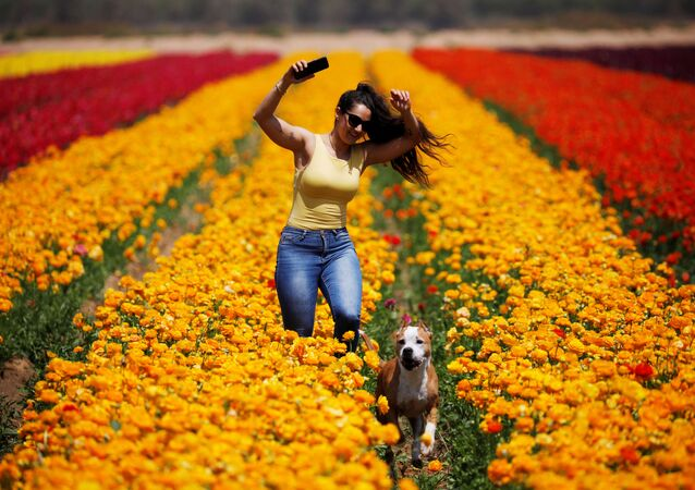 A woman runs with a dog through a field of buttercups near Kibbutz Nir Yitzhak in southern Israel, just outside the Gaza Strip, 14 April 2020.