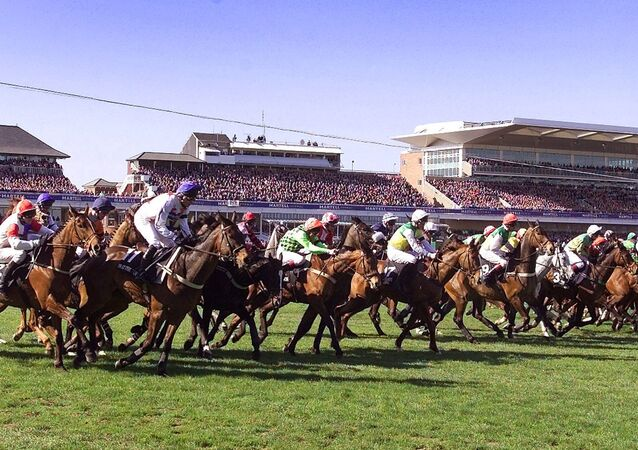 Tape goes up signalling the start of the 155th Grand National at Aintree in Liverpool. Jockey Jim Culloty, riding 20-1 shot Bindaree, beat Richard Johnson, who was riding What's Up Boys, by a length and three quarters.      Culloty, who won the Cheltenham Gold Cup a few weeks earlier, got to ride Bindaree after an injury to fellow jockey Jamie Goldstein.      Bindaree looked to be in trouble after being overtaken by What's Up Boys over the last fence but Culloty manoeuvred him back into the lead to pick up the win and collect 290,000 pounds  ($355,540) in prize money.