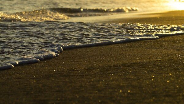 Beach - Sputnik International