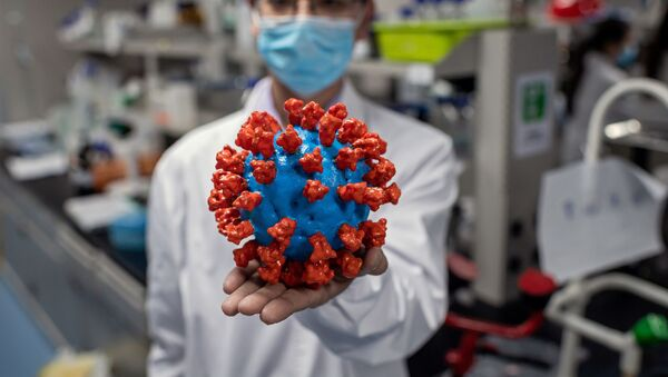 In this picture taken on April 29, 2020, an engineer shows a plastic model of the COVID-19 coronavirus at the Quality Control Laboratory at the Sinovac Biotech facilities in Beijing. - Sinovac Biotech, which is conducting one of the four clinical trials that have been authorised in China, has claimed great progress in its research and promising results among monkeys. - Sputnik International