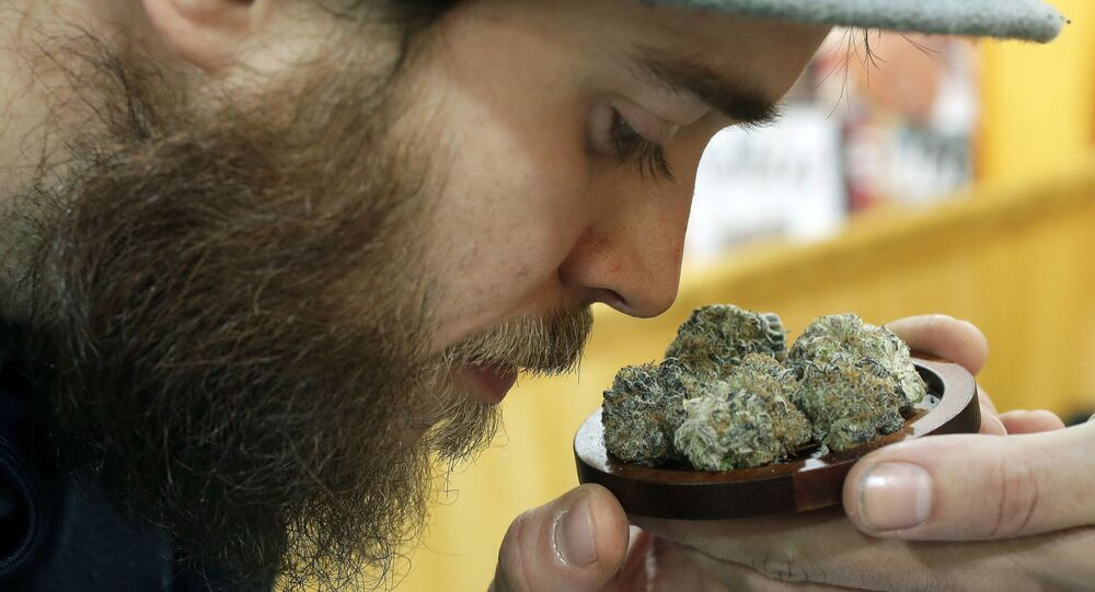 In this In this Dec. 17 2017 file photo, Julian Clark, of Westerly, R.I., smells a strain of marijuana flowers called Cookie Pebbles, at a trade show in Worcester, Mass. Three New England states legalized recreational marijuana, but there is still no place to buy pot legally in the region. Sunday, July 1, 2018, had been the target date to open pot shops in Massachusetts, but no retail licenses have yet been awarded. Possession of small amounts of recreational marijuana becomes legal in Vermont that day, but the law has no provisions for retail sales. Pot shops aren't expected in Maine until 2019 at earliest.