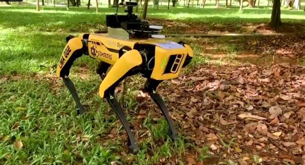 Screenshot of the video of the robot-dog patrolling the parks in Singapore to encourage social distancing