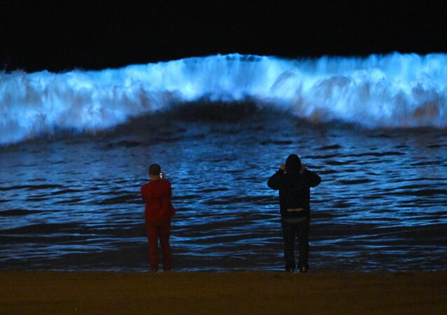 Spectators watch bioluminescent plankton light up the shoreline as they churn in the waves at Dockweiler State Beach during the coronavirus outbreak, Wednesday, April 29, 2020, in Los Angeles, Calif.