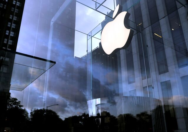 The Apple Inc. logo at the entrance to the Apple store on 5th Avenue in Manhattan, New York