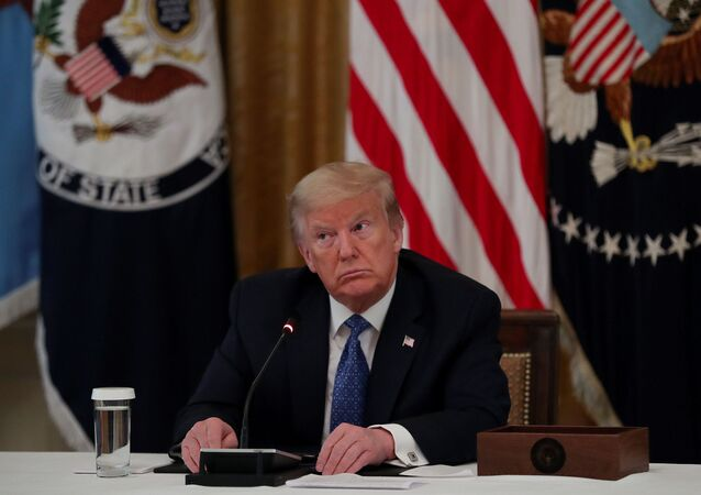 US President Donald Trump participates in a Cabinet meeting on the administration's coronavirus disease (COVID-19) outbreak response in the East Room at the White House, 19 May 2020