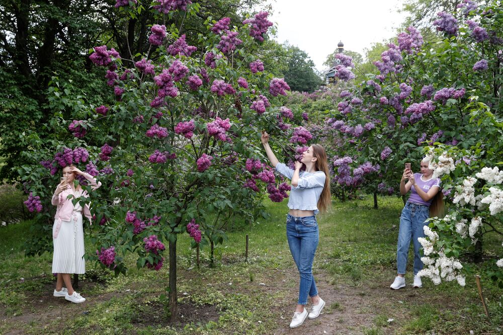Women take pictures in front of blossoming lilac trees as they visit a botanical garden following the easing of lockdown measures, which were imposed to curb the spread of the coronavirus disease (COVID-19), in Kiev, Ukraine 18 May 2020.