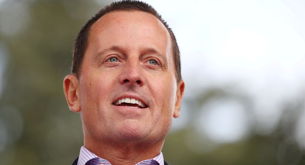 U.S. Ambassador to Germany Grenell to step down: German media