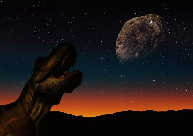 Dinosaur and asteroid