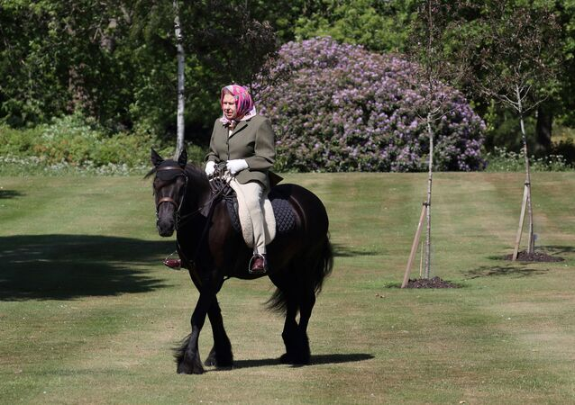 Britain's Queen Elizabeth II rides Balmoral Fern, a 14-year-old Fell pony, in Windsor Home Park, following the outbreak of the coronavirus disease (COVID-19), in Windsor, Britain, in this undated pool picture released on May 31, 2020.