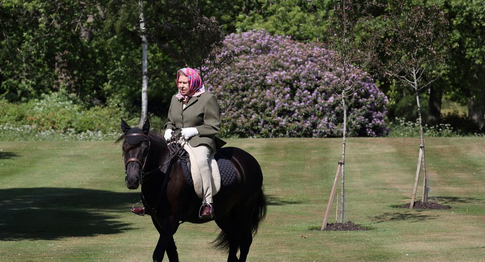 After Months of Quarantine, Queen Elizabeth Spotted Riding Her Favourite Pony Again