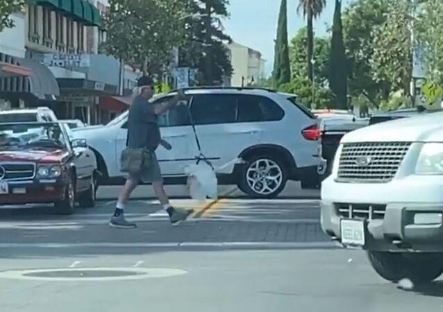 Man Walks Pet Goose on Leash Downtown