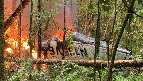 Photo of small plane crashed in rural Georgia, 5 June 2020 - Sputnik International