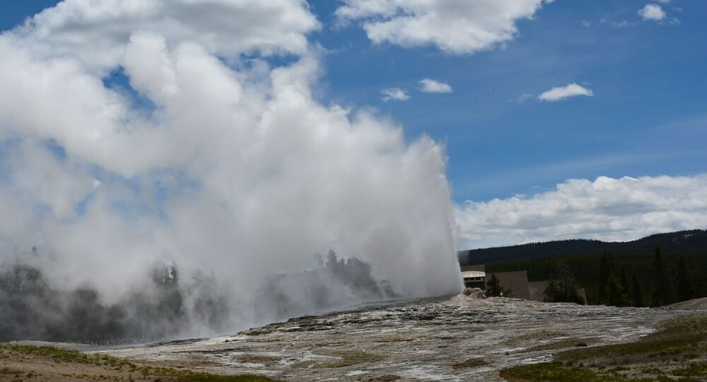 Old Faithful geyser erupts in Yellowstone National Park in Wyoming on June 11, 2019. - Old Faithful has erupted every 44 to 125 minutes since 2000.