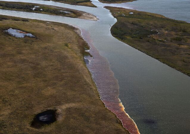 An aerial view shows the pollution in a river outside Norilsk on June 6, 2020.