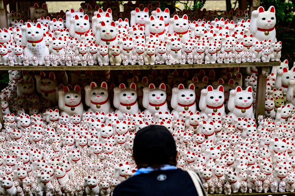 A visitor takes pictures of Maneki-neko statues, also known as beckoning cat, at Gotokuji temple in Tokyo on June 10, 2020.