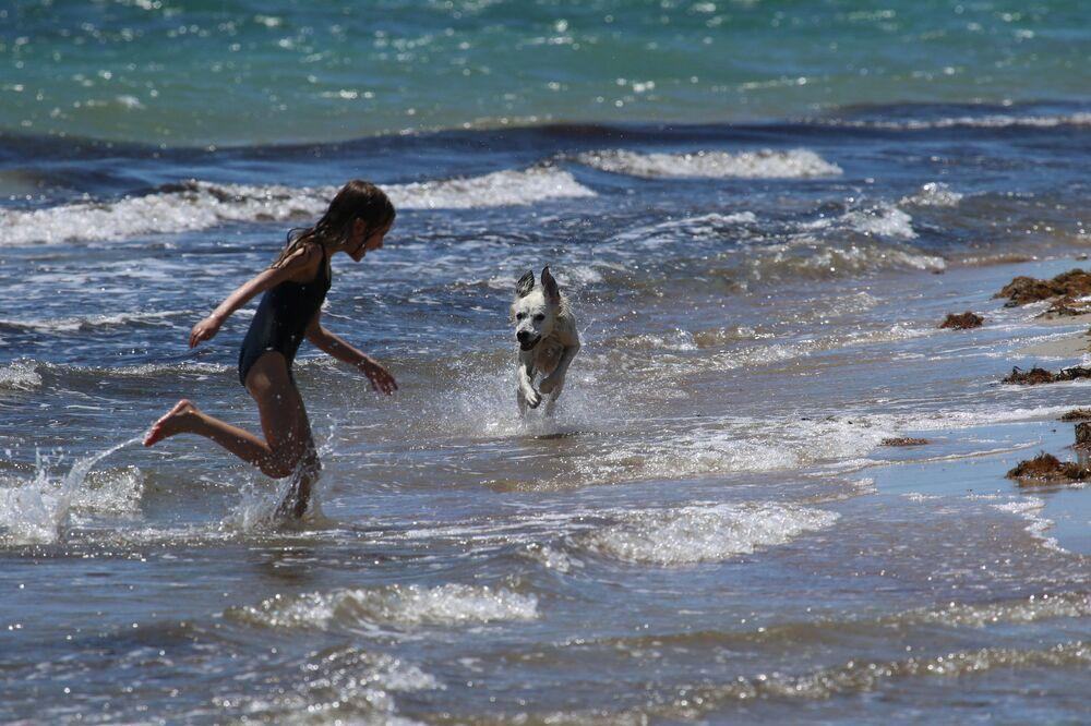 A girl plays with a dog on the beach in Yevpatoriya, Crimea 4 June 2020.