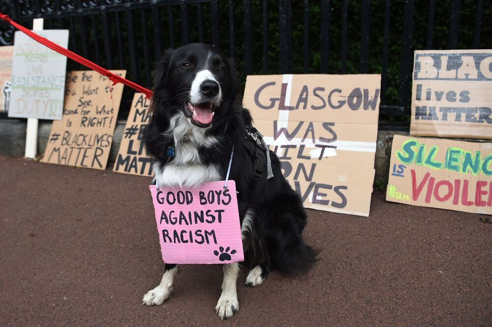 A dog wearing a placard  is posed for a photograph in front of placards, left outside Holyrood Palace after a demonstration in Edinburgh on 7 June 2020, organised to show solidarity with the Black Lives Matter movement in the wake of the killing of George Floyd.