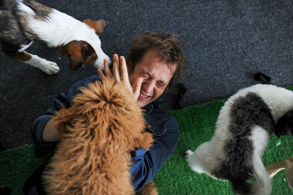 Artist and dog trainer from the Great Moscow State Circus Mikhail Ermakov reacts during a rehearsal with dogs amid the coronavirus disease (COVID-19) outbreak in Moscow, Russia, in this handout picture released 4 June 2020.