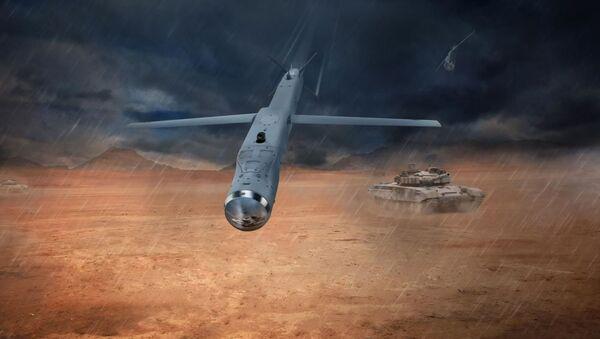 Raytheon's GBU-53 StormBreaker, better known as the Small Diameter Bomb II (SDB), can glide up to 40 nautical miles to strike its target using a tri-mode seeker - Sputnik International