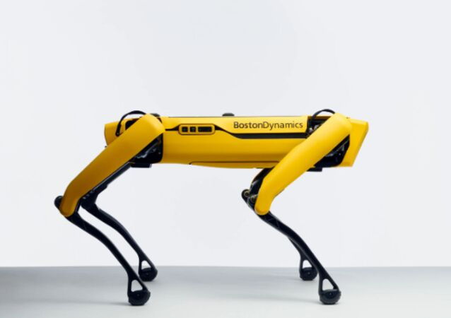 Man's Best Mechanical Friend: Robotic Dog Hits US Shelves