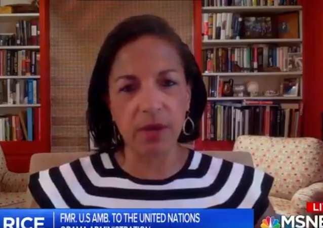 Screenshot of the video of Susan Rice during an MSNBC speaking about the upcoming election and Trump's supporters, 19 June 2020