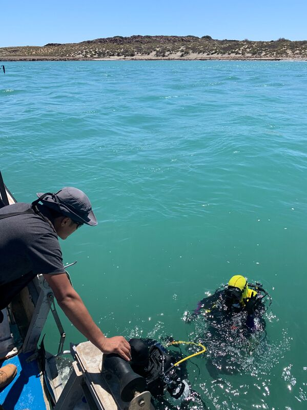 Researchers from Flinders University, the University of Western Australia, and James Cook University working on discovering underwater artefacts dating back thousands of years when the seabed was dry land, in the Dampier Archipelago in Australia, 2019. - Sputnik International