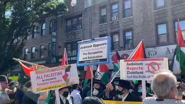 A general view of the 'Day of Rage' rally to protest Israeli annexation plans in the West Bank, in Brooklyn, New York, July 1, 2020 - Sputnik International