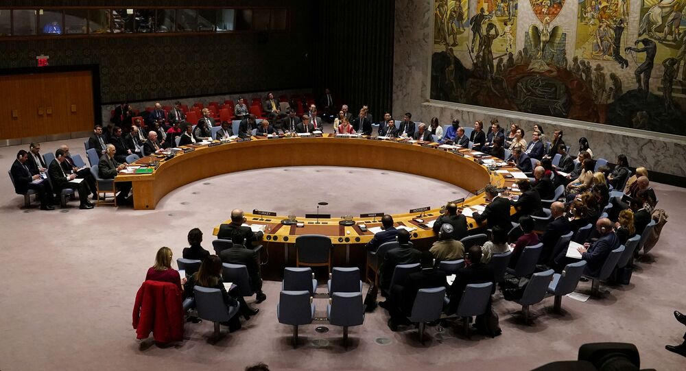 The United Nations Security Council meets about the situation in Syria at United Nations Headquarters in the Manhattan borough of New York City, New York, U.S., February 28, 2020