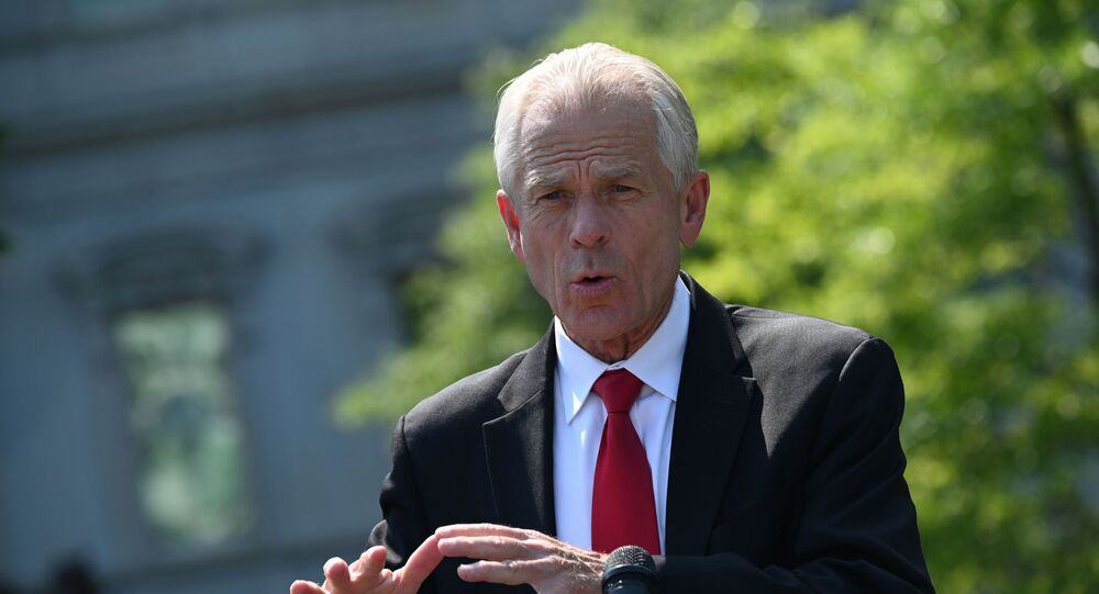 White House adviser Peter Navarro speaks to reporters outside the West Wing in Washington, U.S. July 3, 2020.