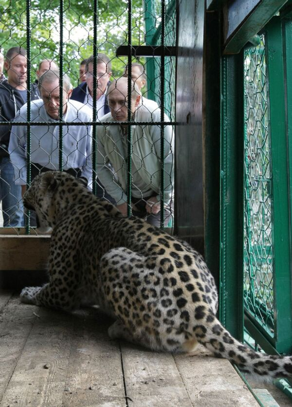 Vladimir Putin visits Sochi National Park - Sputnik International