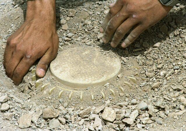 Field engineer  demining