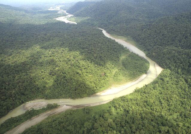 Military plane with 11 passengers missing in Amazonia