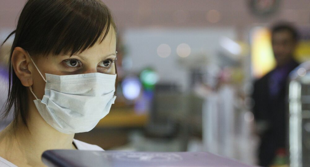 Preventive measures against swine-flu outbreak at Moscow's Sheremetyevo-1 airport