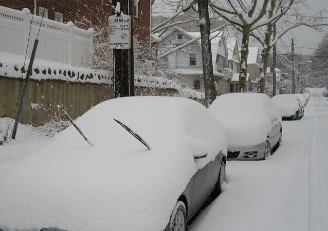 Snowstorm Juno has led to public transport and flight disruptions in the United States, where states of emergency have been declared in seven states, ABC News reports.