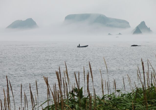 South Kurils