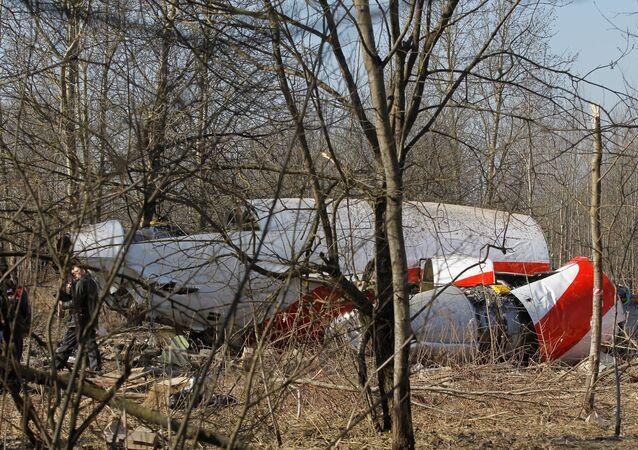 Polish Air Force Tu-154 crash site outside Smolensk