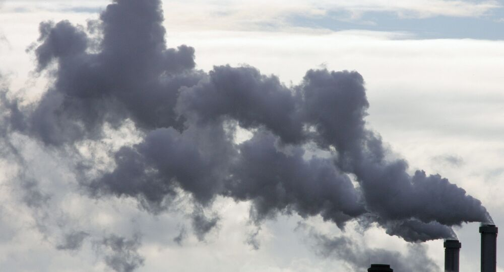 Australia largely depends on coal, being one of the world's major coal exporters.